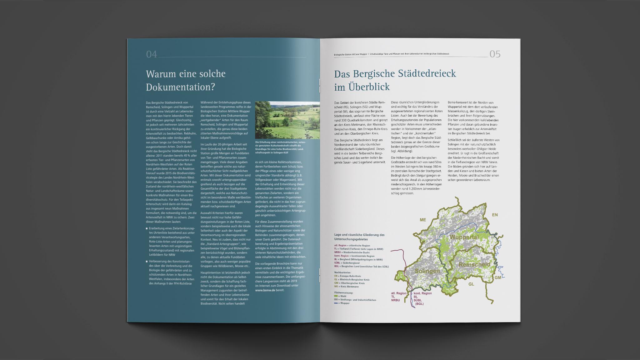 Design des Innenteils der Broschüre