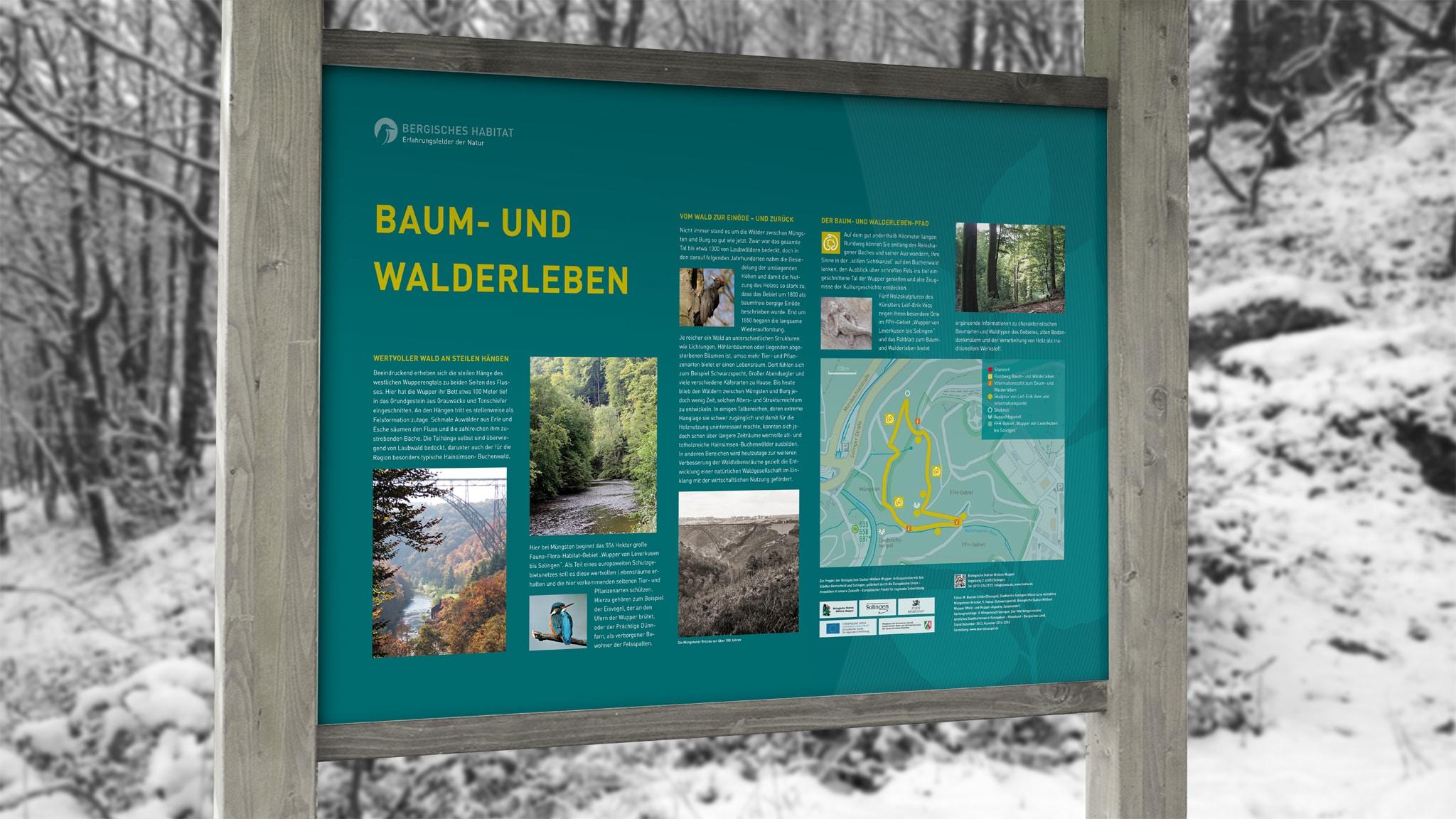 Infotafel Baum- und Walderleben im Wald