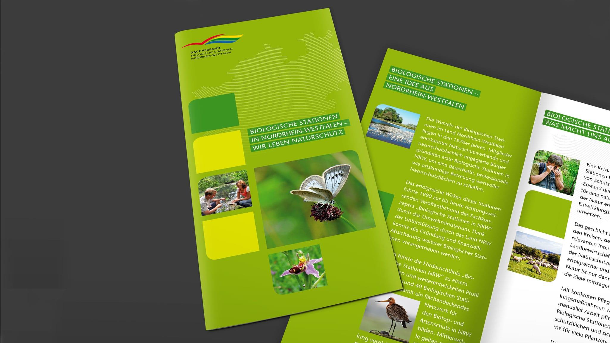 Faltblatt für den Dachverband der Biostationen NRW
