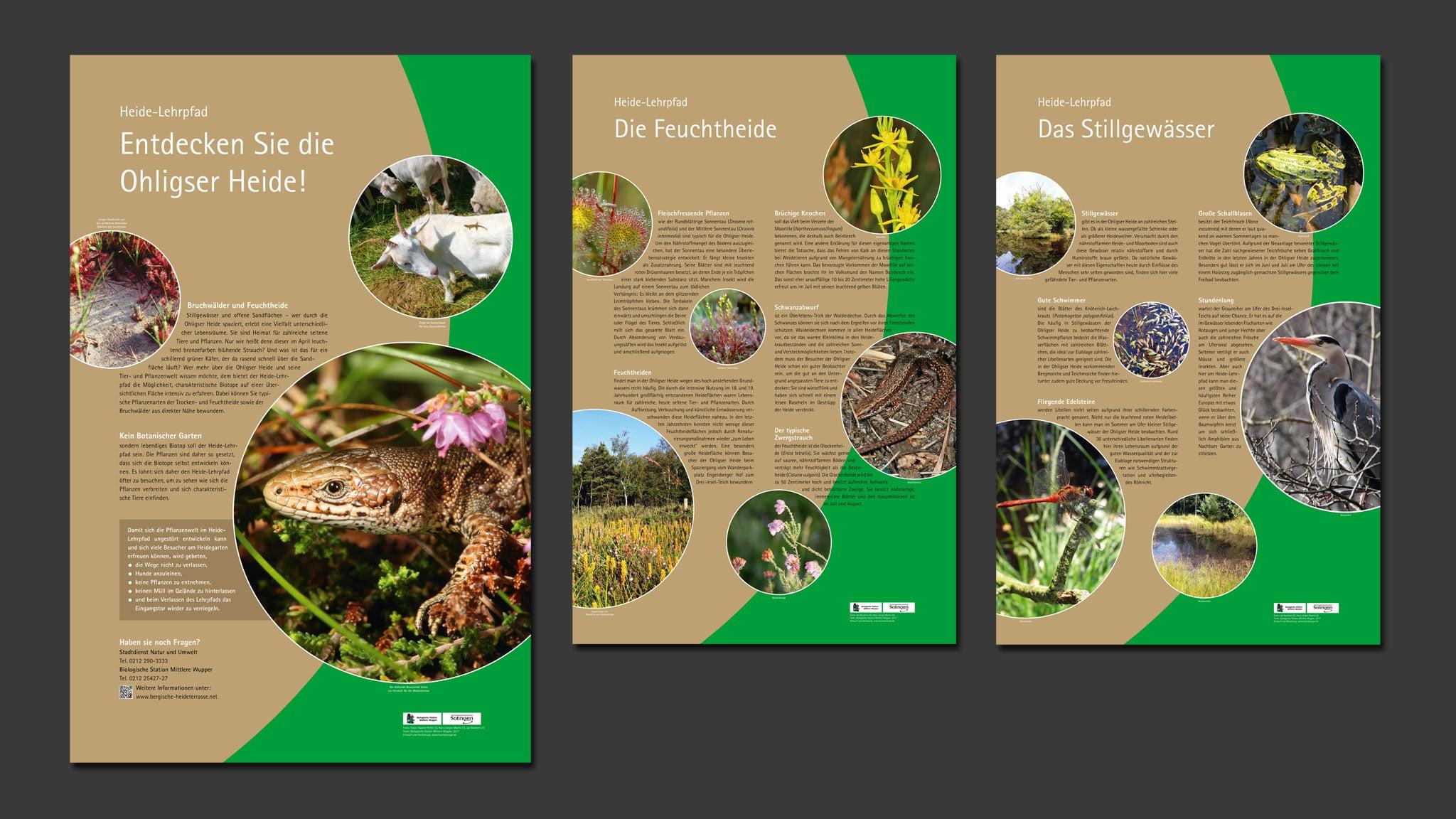 Infotafeln für den Heide-Lehrpfad